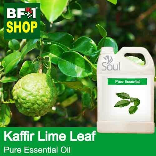 Pure Essential Oil (EO) - Lime - Kaffir Lime Leaf Essential Oil - 5L