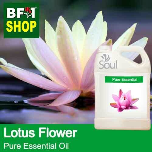 Pure Essential Oil (EO) - Lotus Flower Essential Oil - 5L