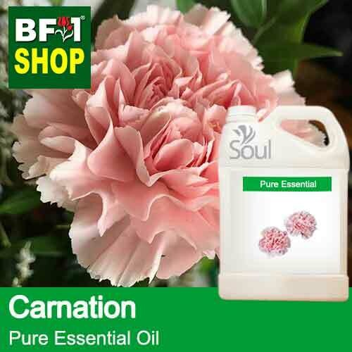 Pure Essential Oil (EO) - Carnation Flower Essential Oil - 5L