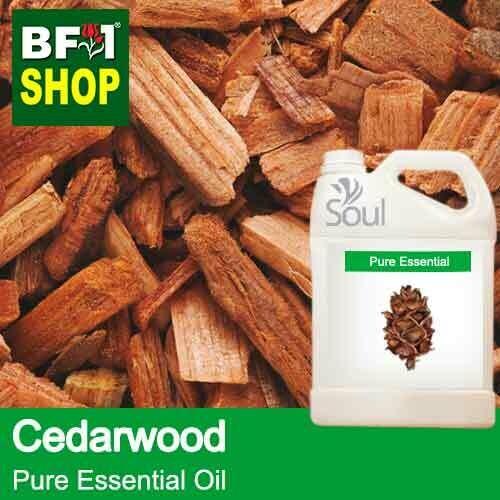Pure Essential Oil (EO) - Cedar Wood Essential Oil - 5L