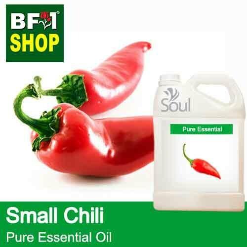 Pure Essential Oil (EO) - Chili - Small Chili Essential Oil - 5L