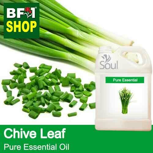 Pure Essential Oil (EO) - Chive Leaf ( Allium schoenoprasum L ) Essential Oil - 5L