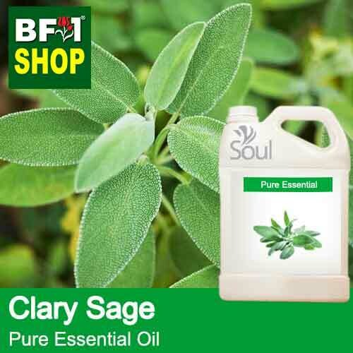 Pure Essential Oil (EO) - Clary Sage Essential Oil - 5L