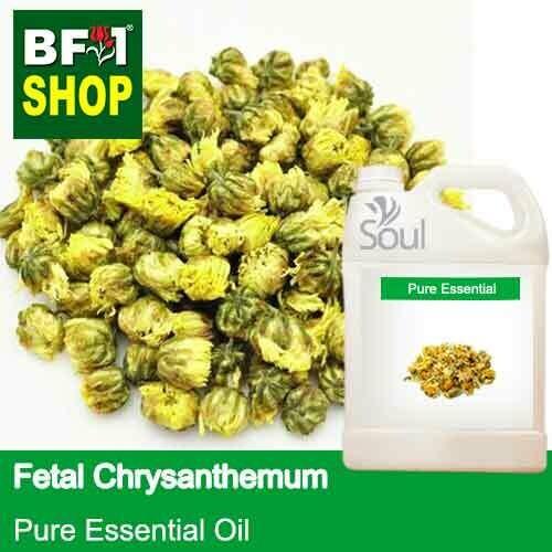 Pure Essential Oil (EO) - Fetal Chrysanthemum Essential Oil - 5L