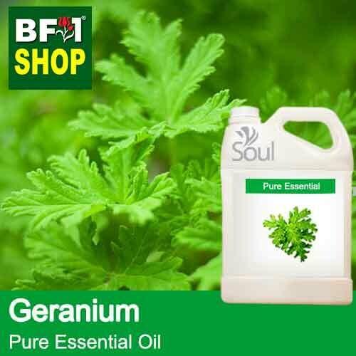 Pure Essential Oil (EO) - Geranium Essential Oil - 5L