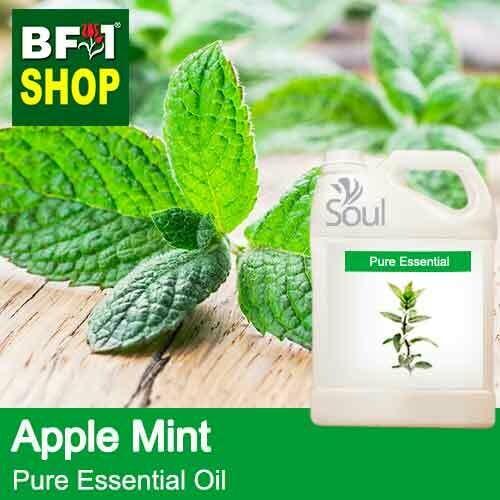 Pure Essential Oil (EO) - Mint - Apple Mint ( Mentha Suaveolens ) Essential Oil - 5L