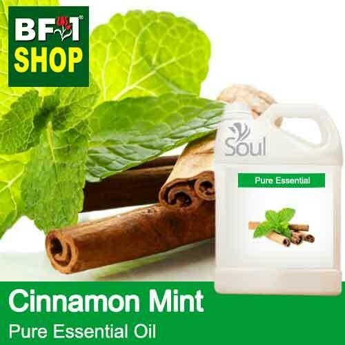 Pure Essential Oil (EO) - Mint - Cinnamon Mint Essential Oil - 5L