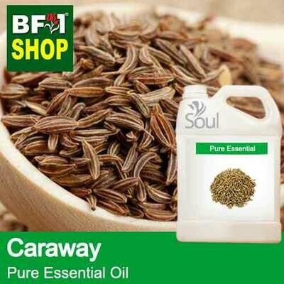 Pure Essential Oil (EO) - Caraway Essential Oil - 5L