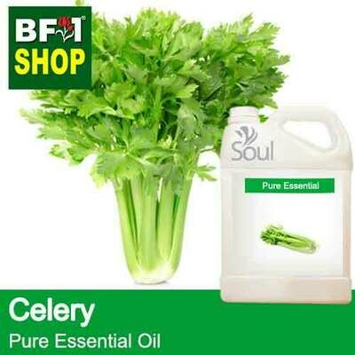 Pure Essential Oil (EO) - Celery Essential Oil - 5L