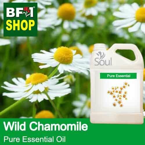Pure Essential Oil (EO) - Chamomile - Wild Chamomile Essential Oil - 5L