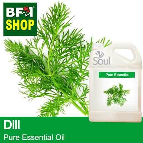Pure Essential Oil (EO) - Dill ( Anethum Graveolens ) Essential Oil - 5L