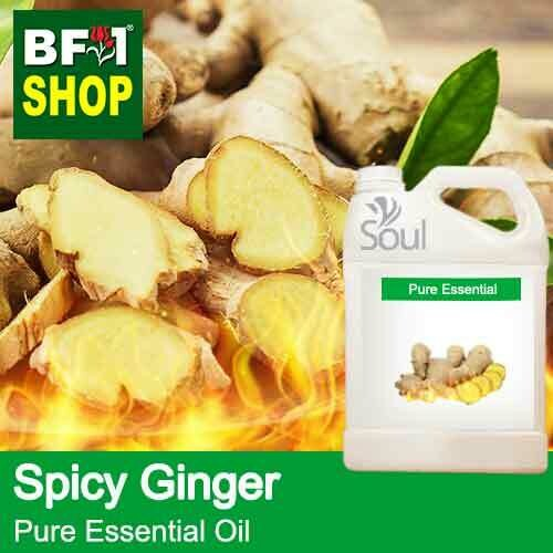 Pure Essential Oil (EO) - Ginger - Spicy Ginger Essential Oil - 5L