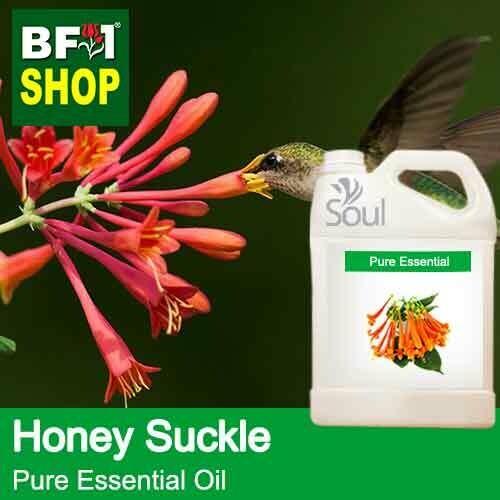 Pure Essential Oil (EO) - Honey Suckle Essential Oil - 5L