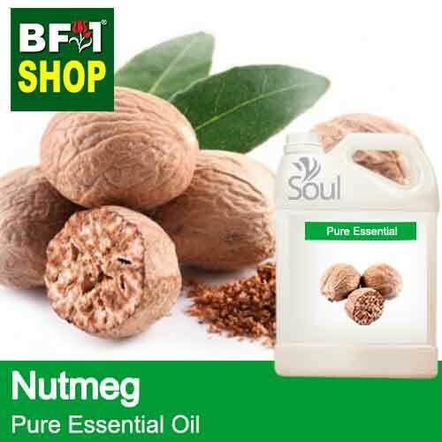 Pure Essential Oil (EO) - Nutmeg Essential Oil - 5L