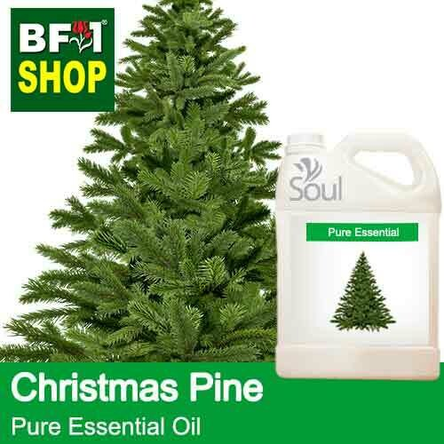 Pure Essential Oil (EO) - Pine - Christmas Pine Essential Oil - 5L