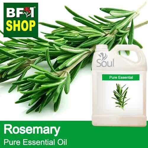 Pure Essential Oil (EO) - Rosemary Essential Oil - 5L