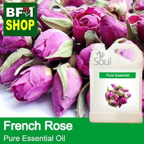 Pure Essential Oil (EO) - Rose - French Rose Essential Oil - 5L