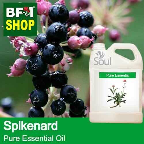 Pure Essential Oil (EO) - Spikenard Essential Oil - 5L