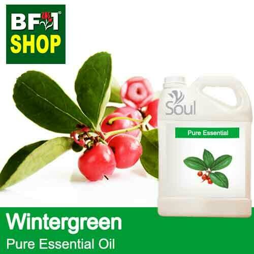 Pure Essential Oil (EO) - Wintergreen Essential Oil - 5L