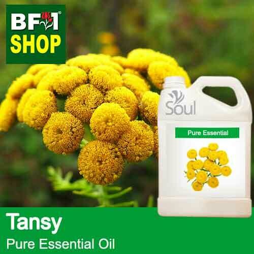 Pure Essential Oil (EO) - Tansy Essential Oil - 5L