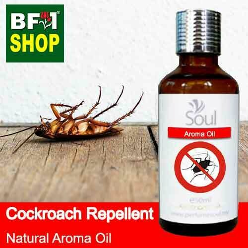Natural Aroma Oil (AO) - Cockroach Repellent Aroma Oil - 50ml
