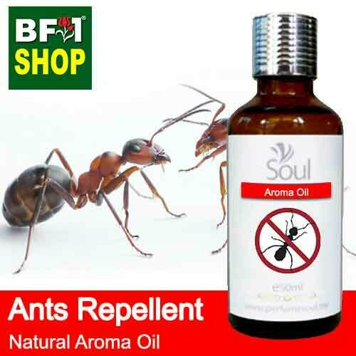 Natural Aroma Oil (AO) - Ants Repellent Aroma Oil - 50ml