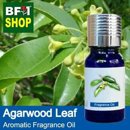 Aromatic Fragrance Oil (AFO) - Agarwood Leaf - 10ml