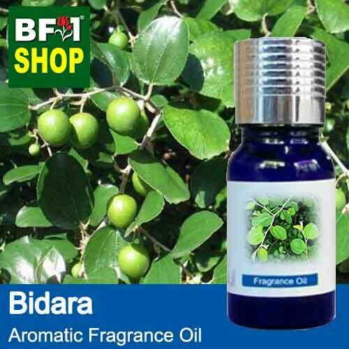 Aromatic Fragrance Oil (AFO) - Bidara - 10ml