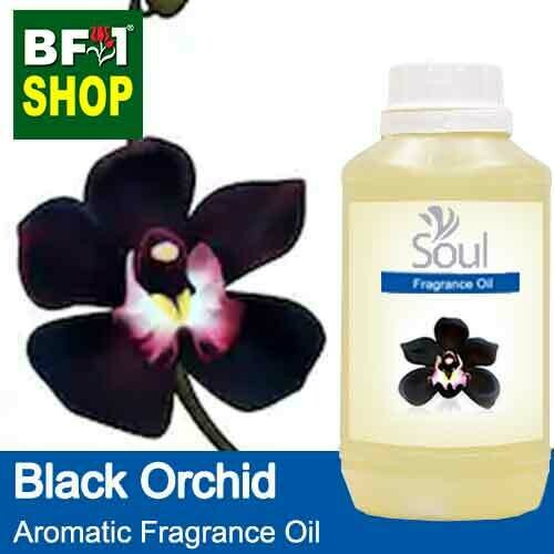 Aromatic Fragrance Oil (AFO) - Orchid Black Orchid - 500ml
