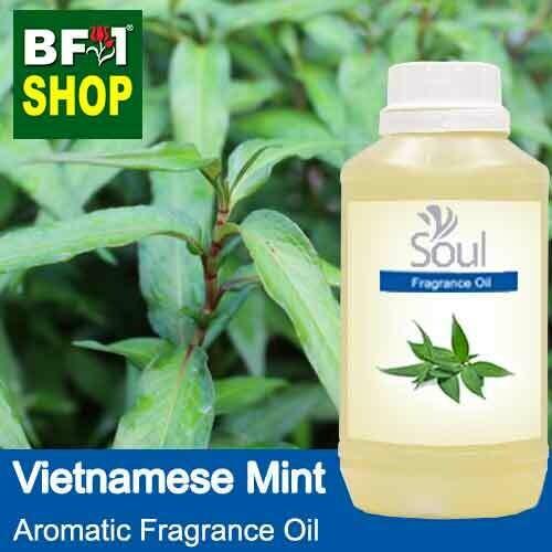 Aromatic Fragrance Oil (AFO) - Vietnamese Mint - 500ml