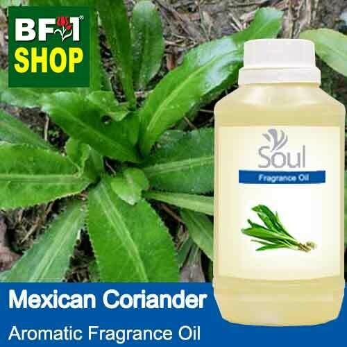 Aromatic Fragrance Oil (AFO) - Mexican Coriander - 500ml
