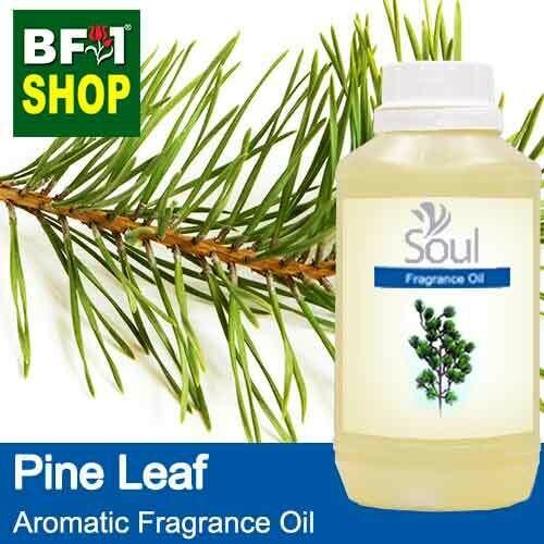 Aromatic Fragrance Oil (AFO) - Pine Leaf - 500ml