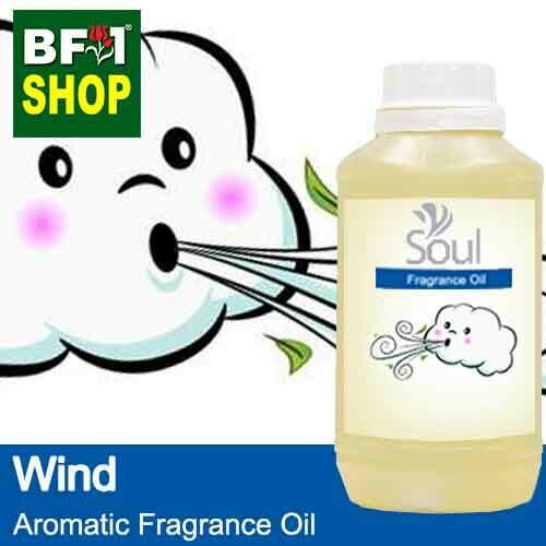 Aromatic Fragrance Oil (AFO) - Wind - 500ml