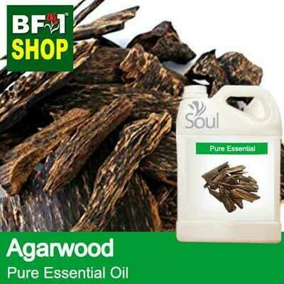 Pure Essential Oil (EO) - Agarwood Essential Oil - 5L