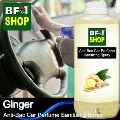 Anti-Bac Car Perfume Sanitizing Spray (ABCP) - Ginger - 1L