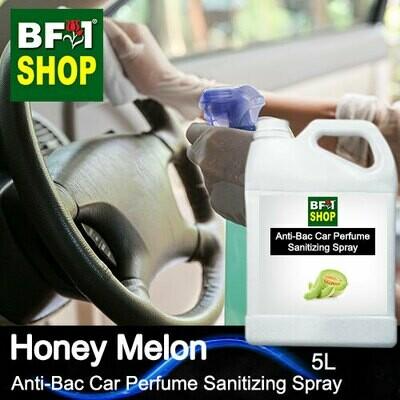 Anti-Bac Car Perfume Sanitizing Spray (ABCP) - Honey Melon - 5L