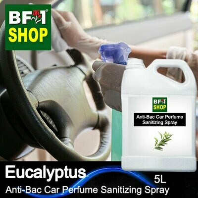 Anti-Bac Car Perfume Sanitizing Spray (ABCP) - Eucalyptus - 5L