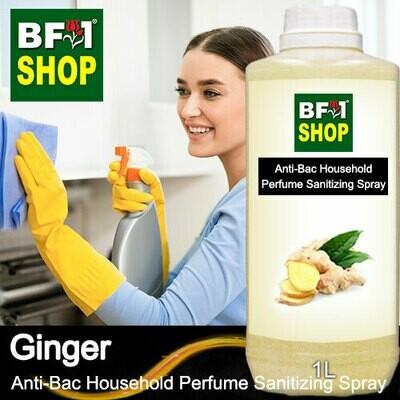Anti-Bac Household Perfume Sanitizing Spray (ABHP) - Ginger - 1L