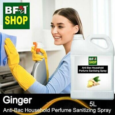 Anti-Bac Household Perfume Sanitizing Spray (ABHP) - Ginger - 5L