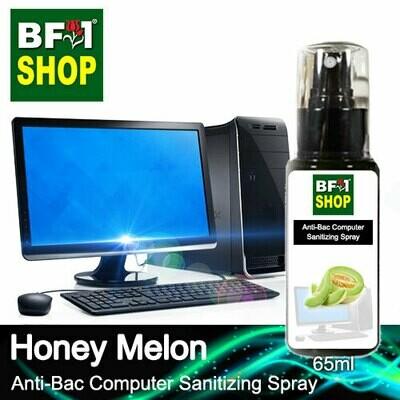 Anti-Bac Computer Sanitizing Spray (ABCS) - Honey Melon - 65ml