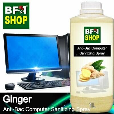Anti-Bac Computer Sanitizing Spray (ABCS) - Ginger - 1L