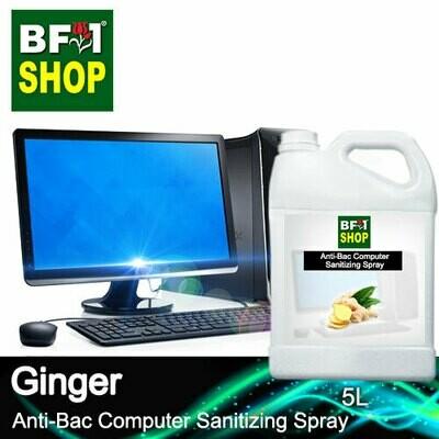 Anti-Bac Computer Sanitizing Spray (ABCS) - Ginger - 5L