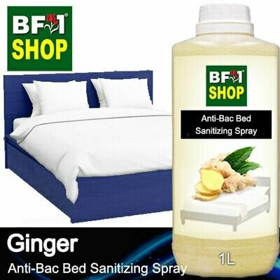 Anti-Bac Bed Sanitizing Spray (ABBS) - Ginger - 1L