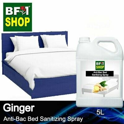 Anti-Bac Bed Sanitizing Spray (ABBS) - Ginger - 5L