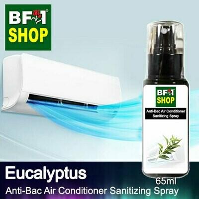 Anti-Bac Air Conditioner Sanitizing Spray (ABACS) - Eucalyptus - 65ml