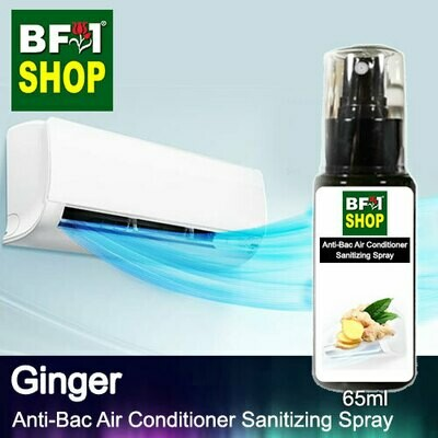Anti-Bac Air Conditioner Sanitizing Spray (ABACS) - Ginger - 65ml