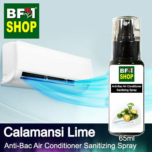 Anti-Bac Air Conditioner Sanitizing Spray (ABACS) - lime - Calamansi Lime - 65ml