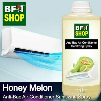 Anti-Bac Air Conditioner Sanitizing Spray (ABACS) - Honey Melon - 1L
