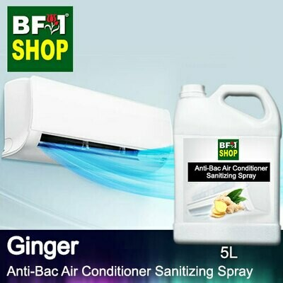 Anti-Bac Air Conditioner Sanitizing Spray (ABACS) - Ginger - 5L