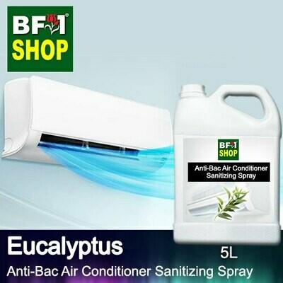 Anti-Bac Air Conditioner Sanitizing Spray (ABACS) - Eucalyptus - 5L